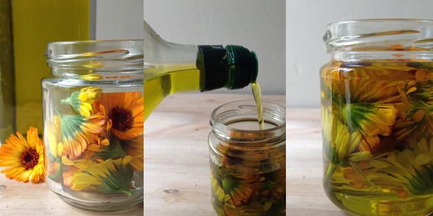 Ringelblumenöl herstellen