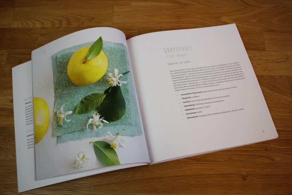 Buch Aromatherapie für Sie